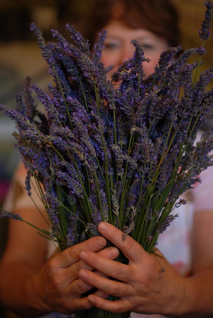 Lavender Haven @ Portland Saturday Market
