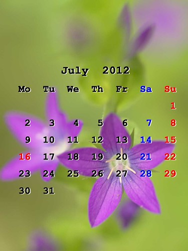 201207_iPhoneWP