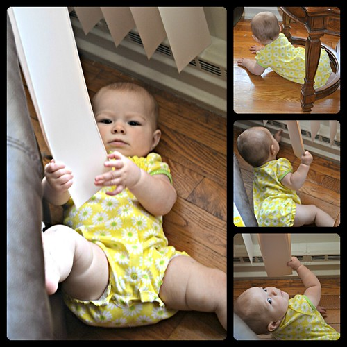 8 months-Julianne crawling