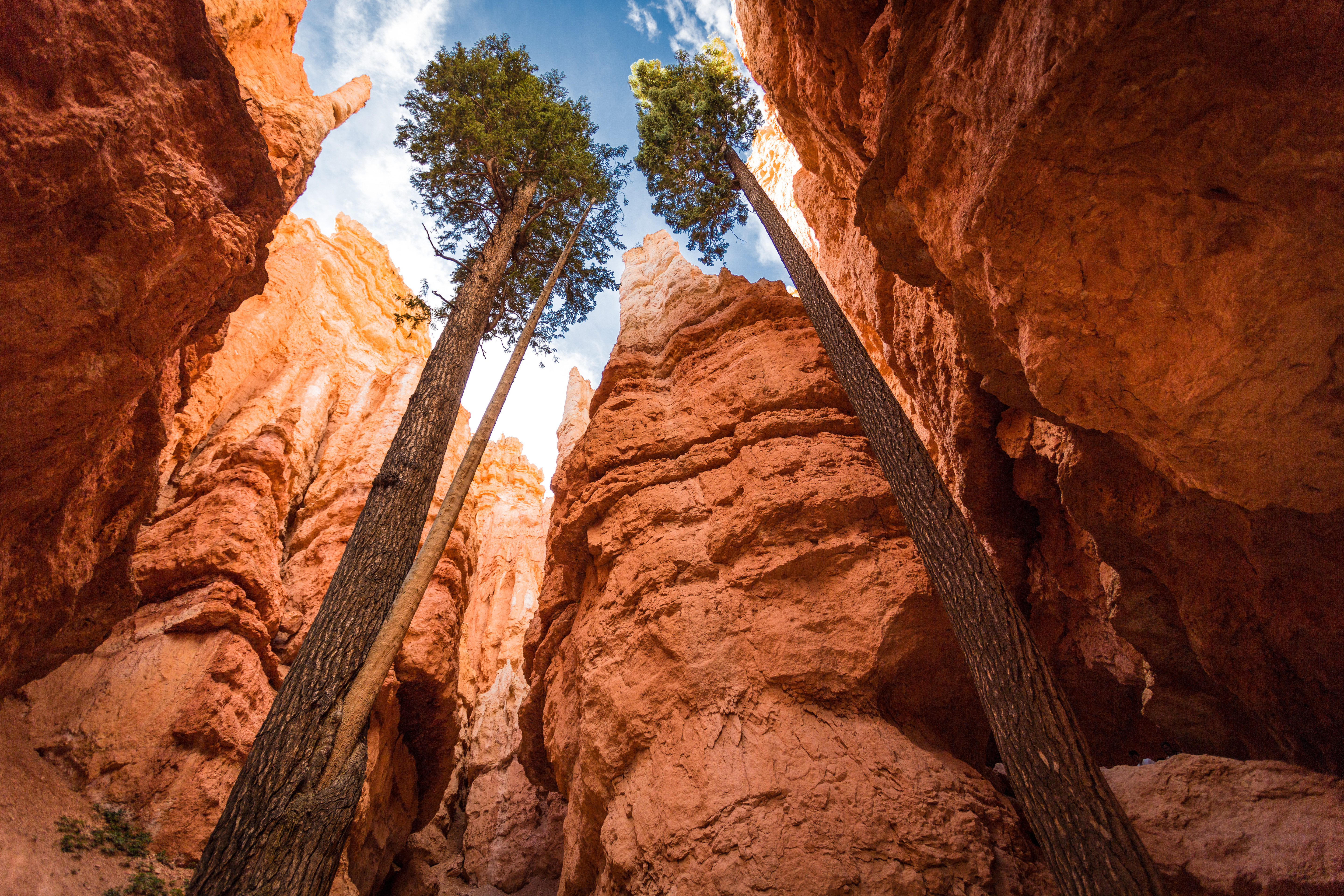 zion national park hiking map with Weather on Stock Photo Relaxing Hiker Woman Resting Feet River Hiking Happy Serene Relaxed Afterhiking Zion National Park Female Zion Canyon Image44158443 further 893066 likewise 7762516988 further K5A3 Zion National Park Washington County Utah likewise Snow Canyon State Park.