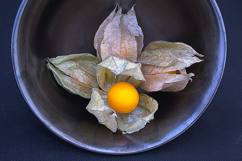Bowl of ground cherries
