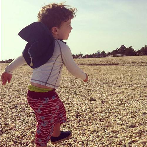 beach prancing