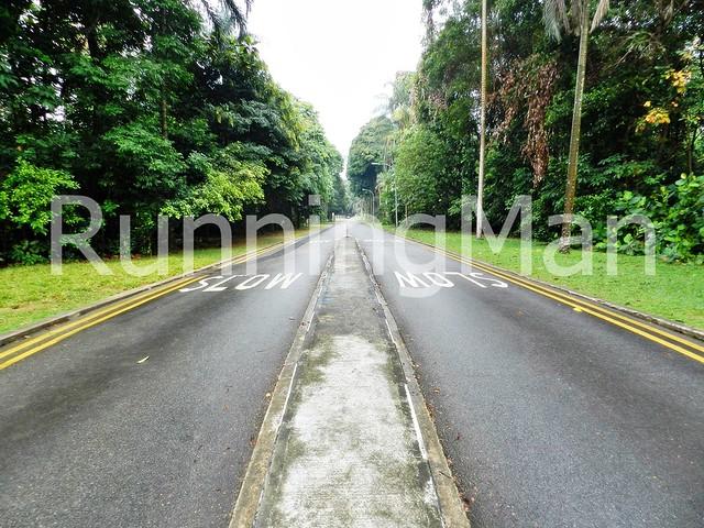 Bukit Batok Nature Park 09