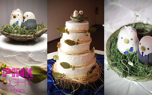 Love Bird Wedding Cake! (+egg!)