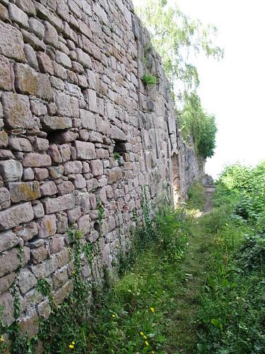 ruine du chateaux frankenbourg 084