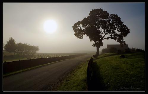 natur tåke soloppgang landskap hedenstad hedenstadkirke