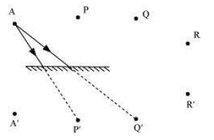 NCERT Solutions for Class 8th Science