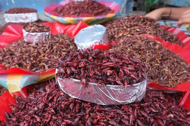"""""""Meat alley,"""" Oaxaca, Nov 2012 12"""