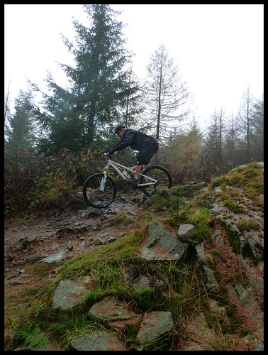 Grizedale Grit by rOcKeTdOgUk