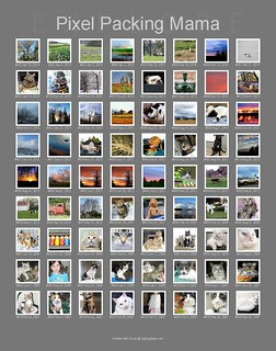 First Page of My 139 Photos that were on Flickr EXPLORE