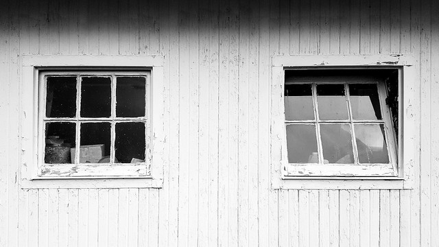 Windows (B&W)