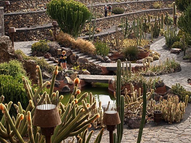 Jardin de Cactus, Cactus Garden, Lanzarote