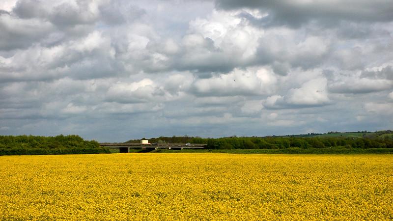 A46 Western Bypass
