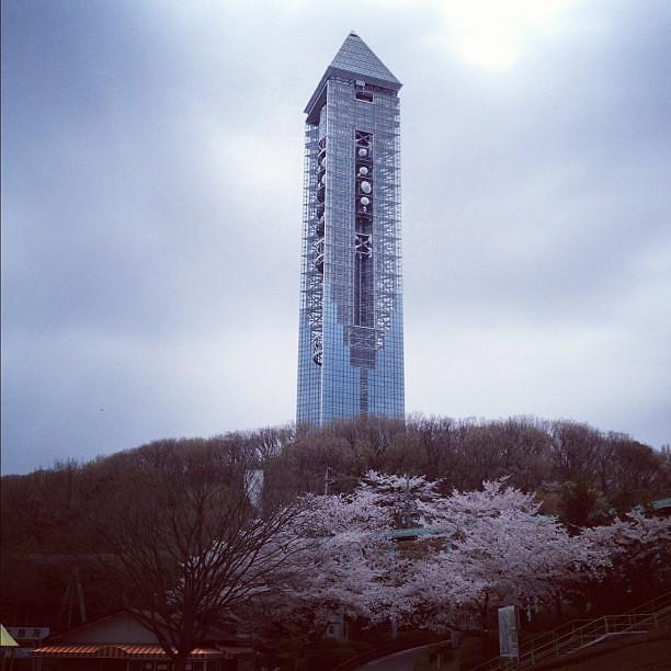 これから、あの塔を登るらしい。