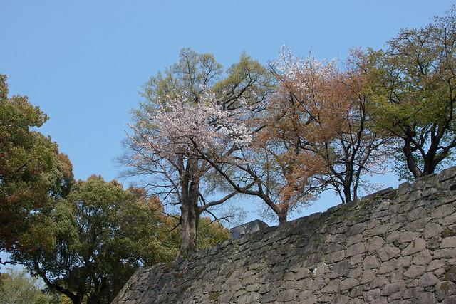 2012-kyushu-472