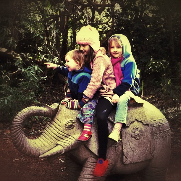 And the caravan rides forth. #elephant #ride