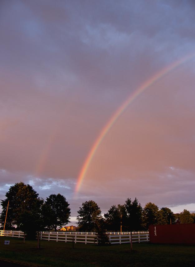 CRW_4001 Rainbow