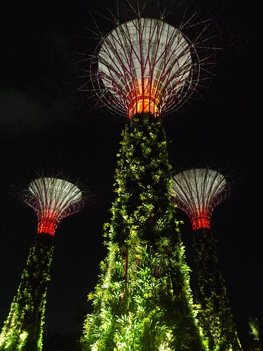 Gardens by the Bay Launch