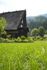 20120630 Shirakawago 5