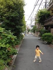 朝散歩 (2012/7/20)