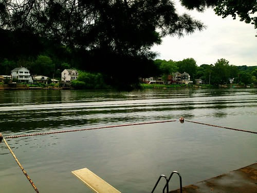 Morning swim in Schuykill River - I survived.