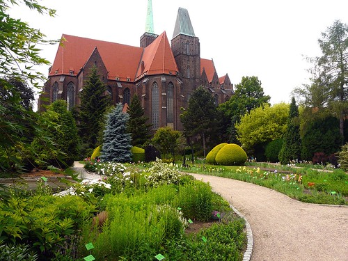 O50a Wroclaw Botanical garden