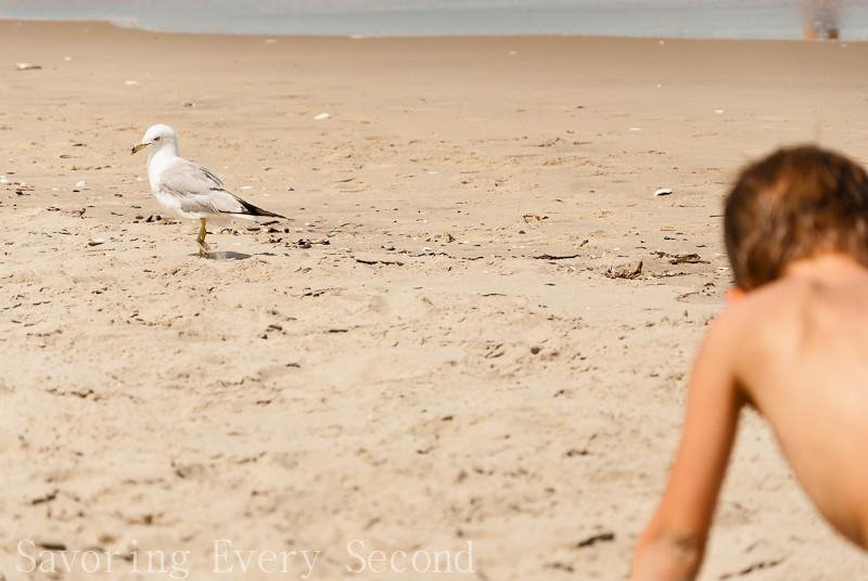 Beach Day-068.jpg