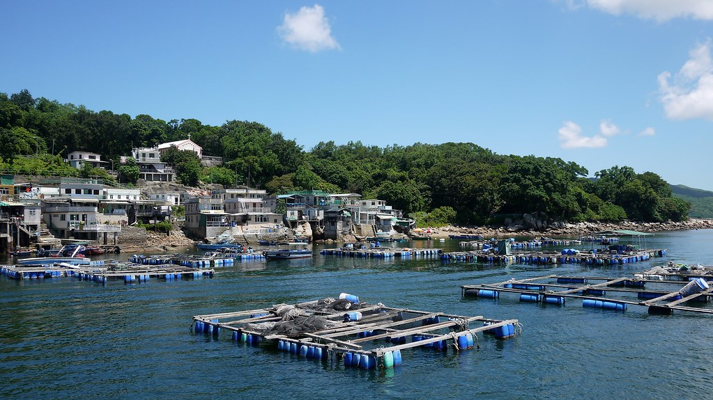 Tap Mun Harbour