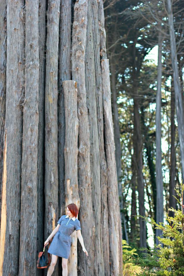 big tree art