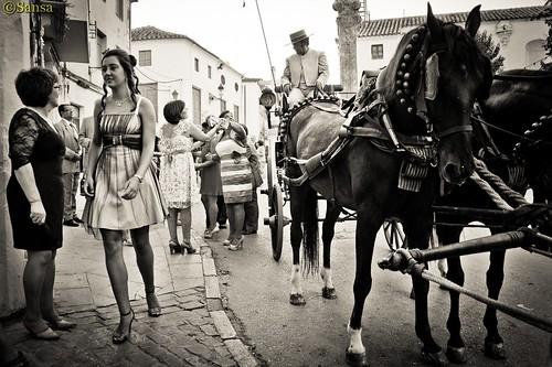 Bodas de Plata Julia y Jesus Yebenes-72-212 by Sansa - Factor Humano