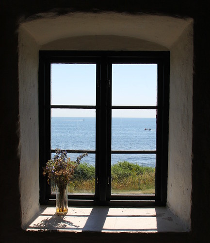 flowers windows sea window view