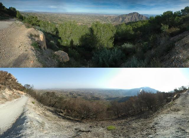 La muela, antes y después