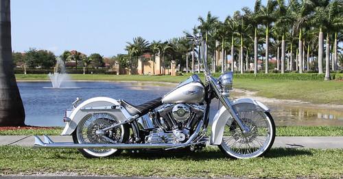 2008 Deluxe