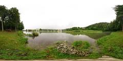 Pond Bruyères (2), Morbier