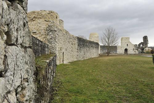 Enceinte du Château de Bellocq, vue de l'intérieur