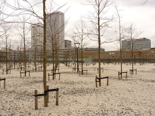 Rotterdam (288)