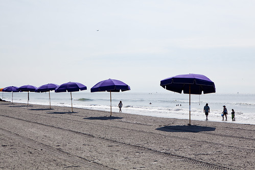 Purple beach umbrellas