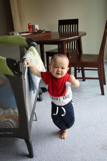 Vincent - 11 months