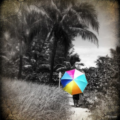 7:365 Big Umbrella by elineart