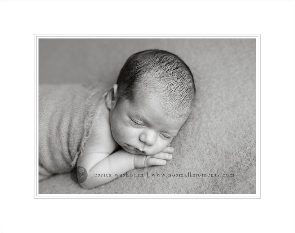 Albany baby photographer