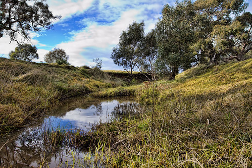 Moonee Ponds Creek (Spicify) 2012-07-14 (_MG_0987)