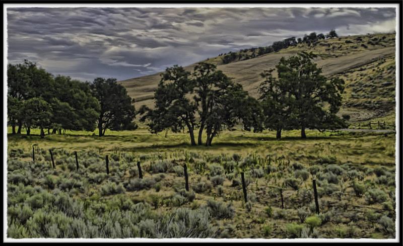 IMAGE: http://farm8.staticflickr.com/7137/7670566724_fb7d5bbf13_c.jpg