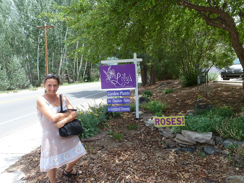 Lily's cafe and garden, Taos