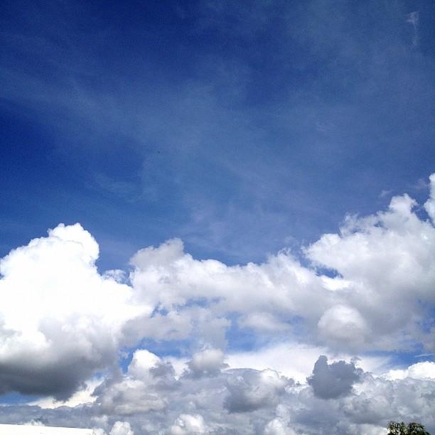 #sky #skyline #clouds #fluffyclouds