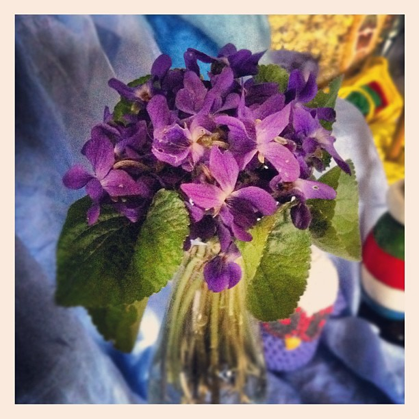 My neighbour brought me flowers from her garden to say she thinks I'm doing such a good job as a mama. Isn't that lovely? #neighbourly #love