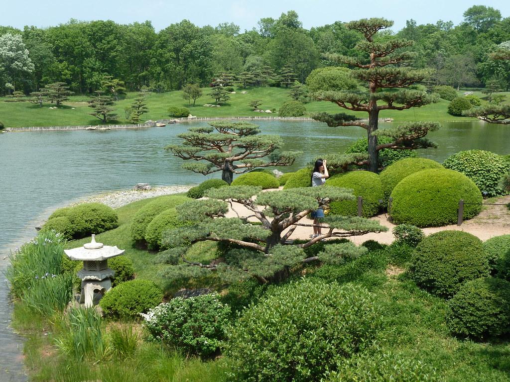 Chicago Botanic Garden Japanese Garden Landscape A