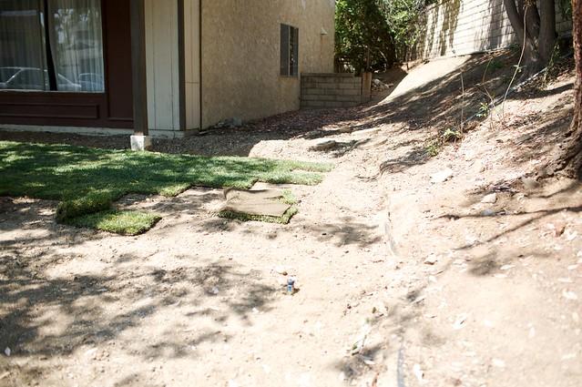 frontyard  006