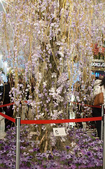Macy's flower show  2014 - NYC