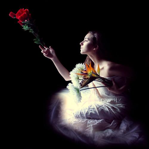 無料写真素材, 人物, 女性, 人物  横顔・横を向く, 人物  花・植物