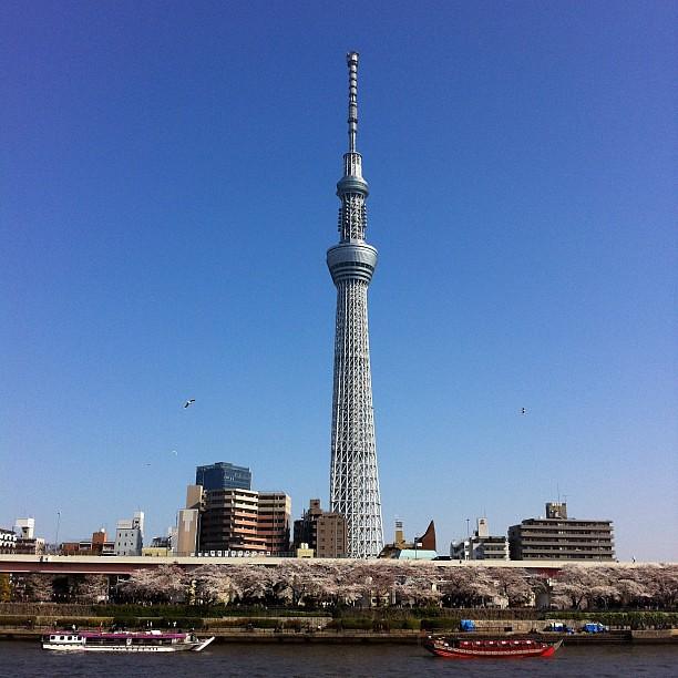東京スカイツリー。 Tokyo Sky Tree.